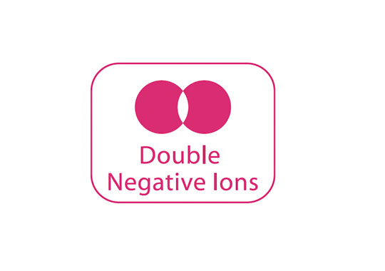 Double Negative Ions